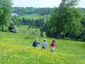 Children enjoying the summer wildflowers at Hughenden